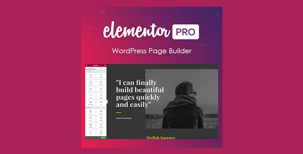 Elementor PRO WordPress Page Builder + Pro